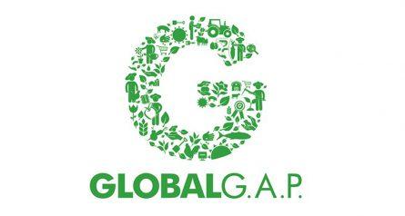 Certificaciones-de-calidad-e-inocuidad-GLOBAL-GAP2